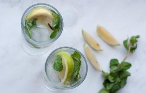 Bergamot Mint Gin Tonic
