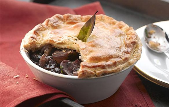 Image of Chestnut Bourguignonne Pie