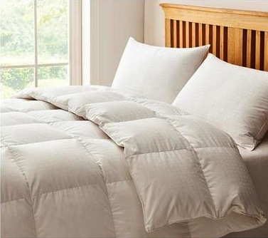 Image of Hungarian Goose Down duvet