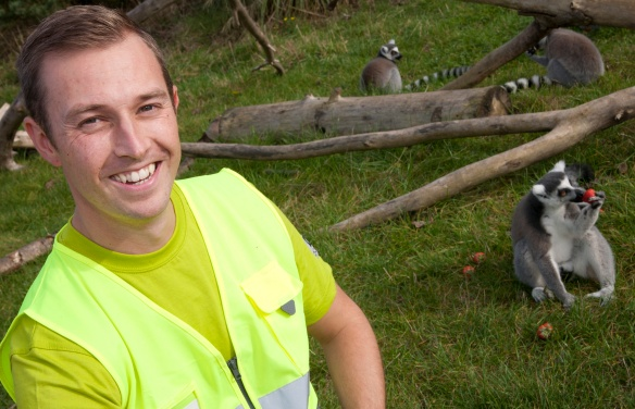 Image of an Ocado driver with a lemur