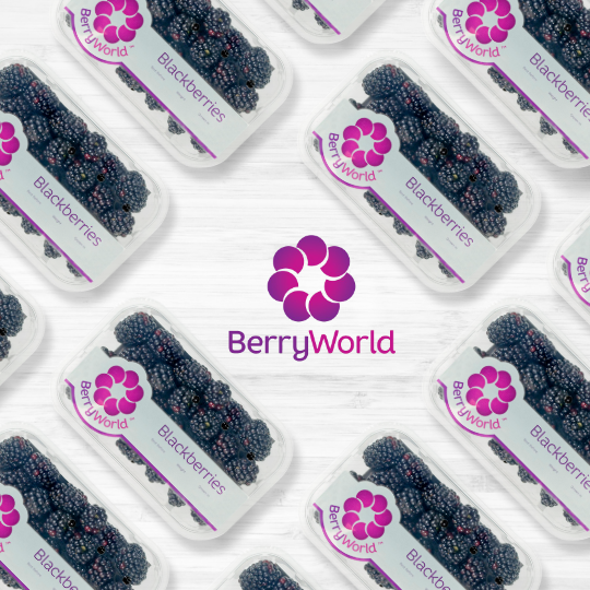 SM1410_Berryworld_Blackberry_Giveaway_Blog 540 x 540.png
